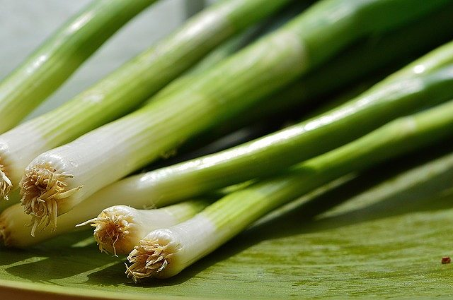 s-spring-onions-1303271_640