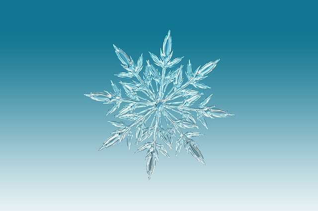 ice-crystal-0209