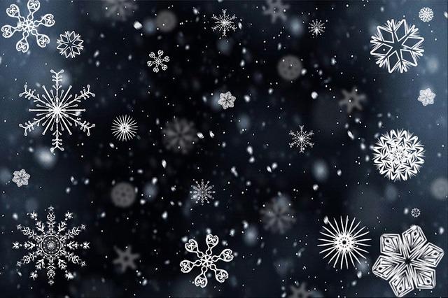 snowflake-0209
