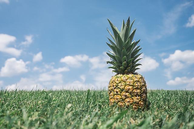 s-pineapple-4