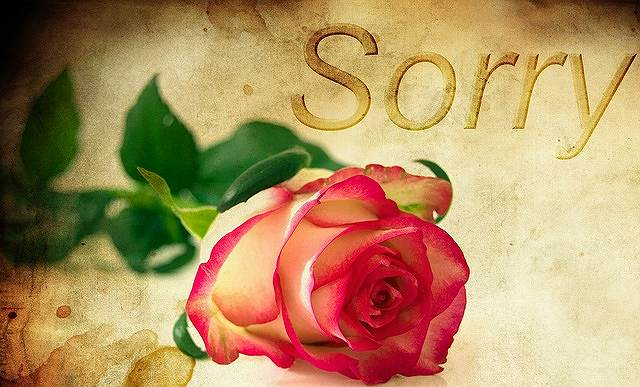 s-rose-1271216_640