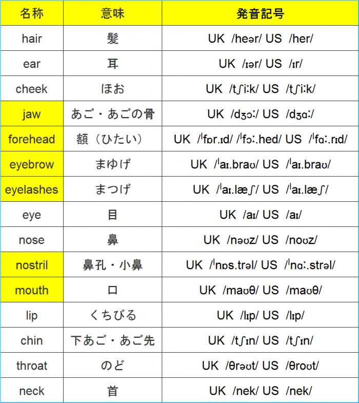 顔のパーツ発音記号一覧表