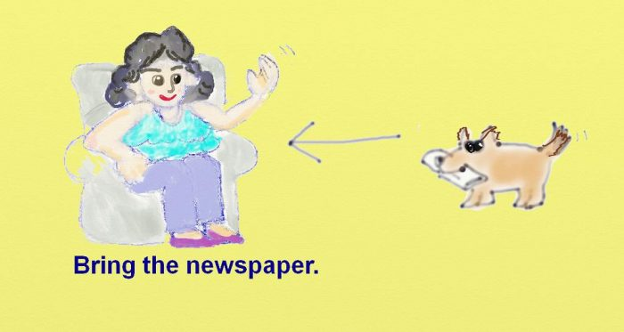 s-bringthenewspaper