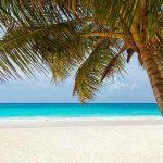 s-beach-84631_640