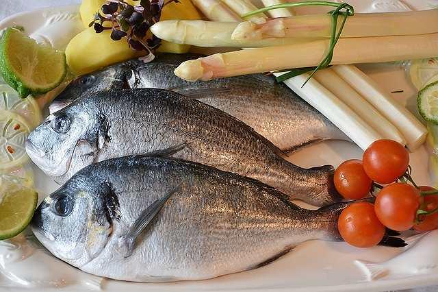 s-fish-2230852_640