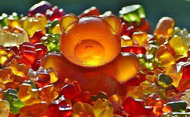 s-giant-rubber-bear-1089612_640
