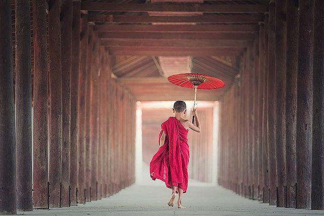 s-umbrella-1807513_640