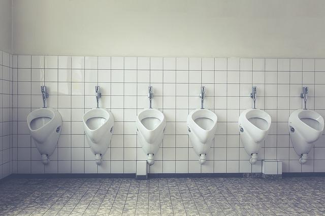 toilet-1542514_640