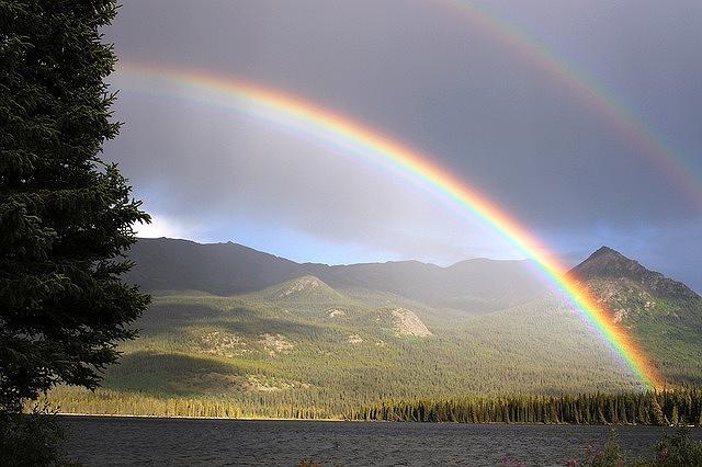 s-rainbow-436171_640