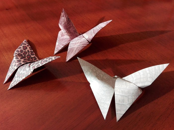 s-butterfly-1994480_1280
